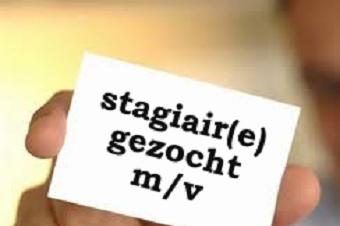 Vacature: stagiaire (m/v) met communicatietalent